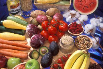 Tisch auf dem unterschiedliches genmanipuliertes Essen liegt
