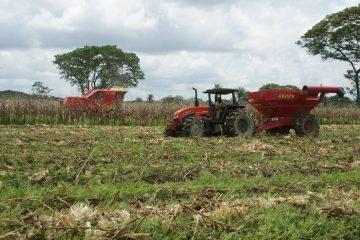 Feld mit einem Traktor
